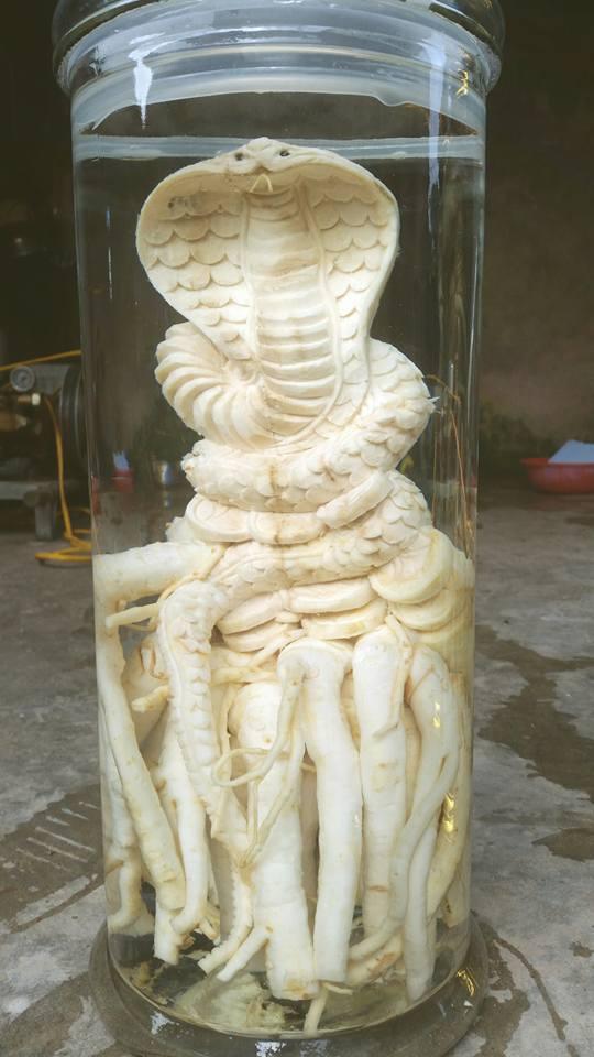 Điêu khắc rắn